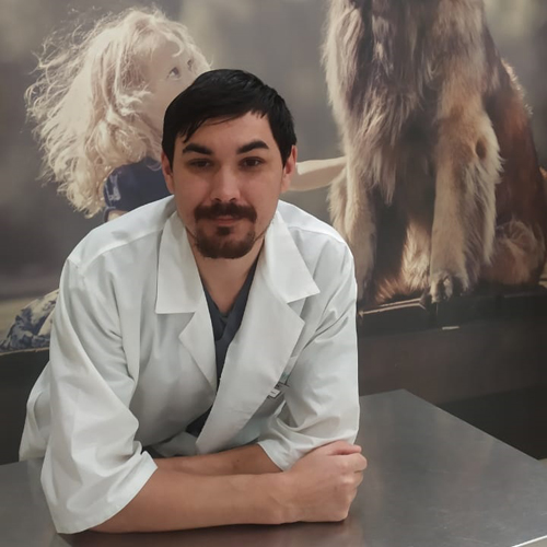 Мылов Александр Геннадьевич